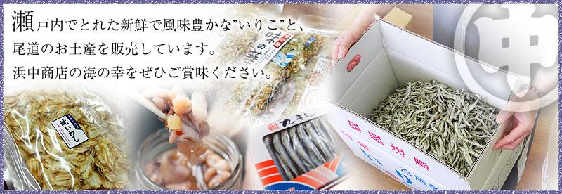 瀬戸内のいりこと尾道のお土産「浜中商店」